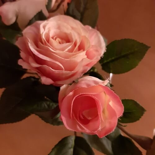 Twee rozen bij rouw